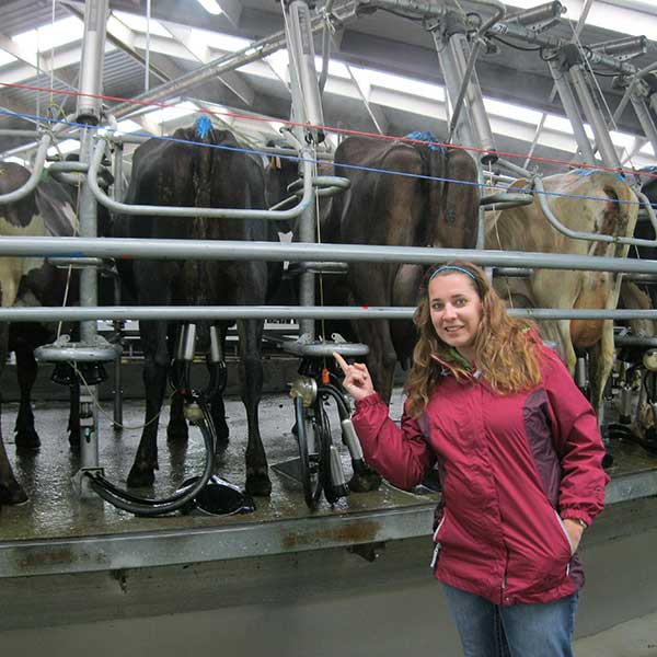 Photo of Engler student at dairy operation in New Zealand